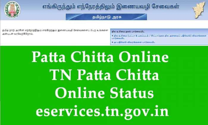 TN Patta Chitta Online Status, View Land Records Ownership