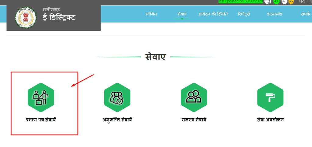 CG E District Portal Services