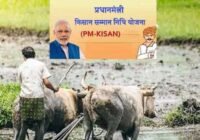 pm kisan yojana failed payment 46 lakh farmer
