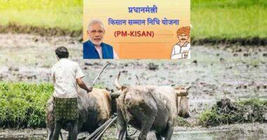 pm kisan yojana failed payment 46 lakh farmer